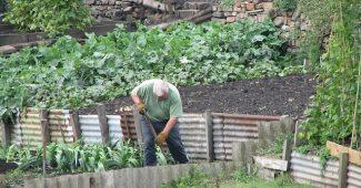 jardinier à Paris